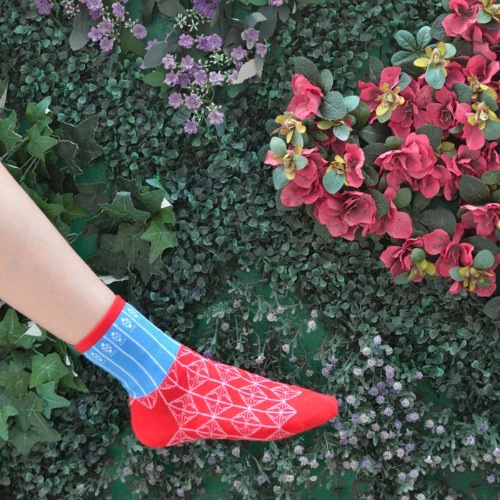HK Style Red Blue Gate Socks