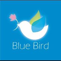 Blue Bird 手作羊毛氈
