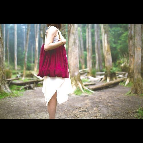 |南庭系列|裙包-裘斯南庭