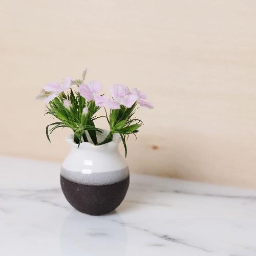 小樽 — 黑白花