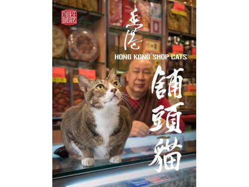 '香港舖頭貓 Hong Kong Cat Shops'  by Marcel Heijnen