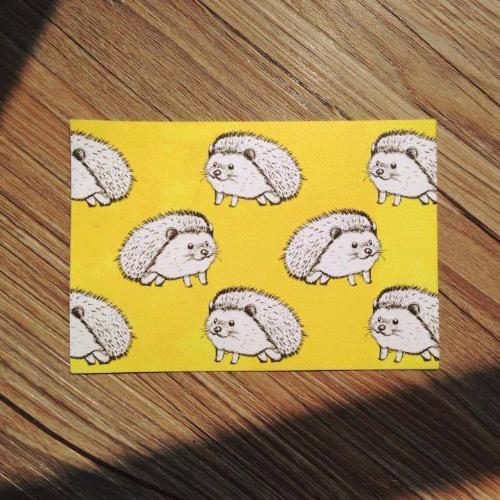 【動物系列】忙碌的刺蝟明信片