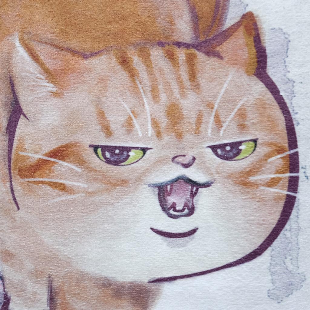 胖貓圖 Crouching Cat 長毛巾