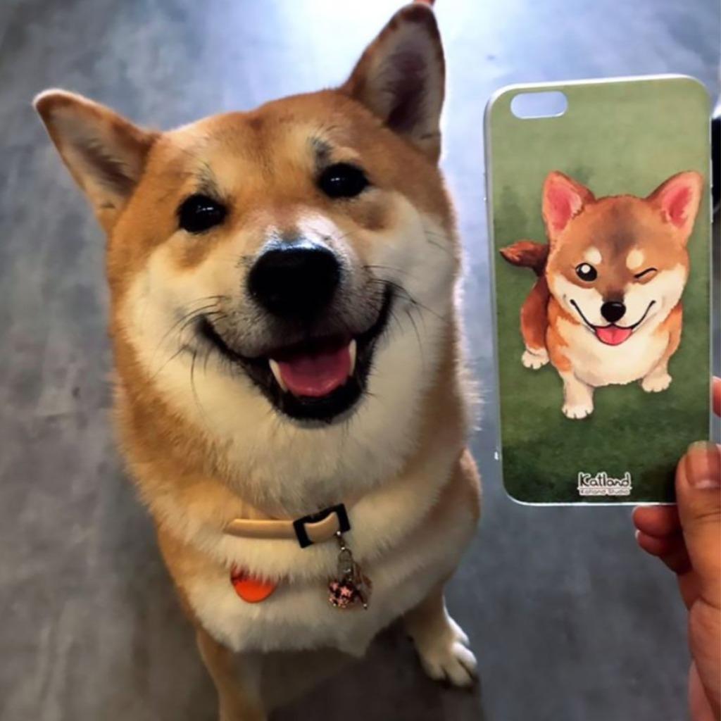 自家設計 - 柴犬手機殼 保護套Phone Case D16